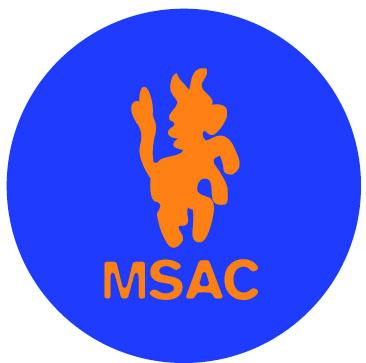 """Campo nazionale Msac 2017 – """"Mi fa volare!"""""""